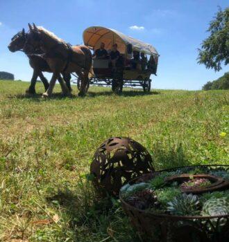 chariot à fondue